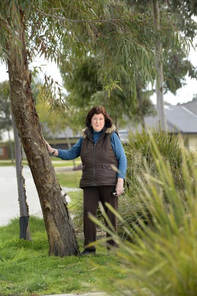June Horner loves the trees in the Botanic Ridge estates and hopes they are here to stay. Picture: ROB CAREW